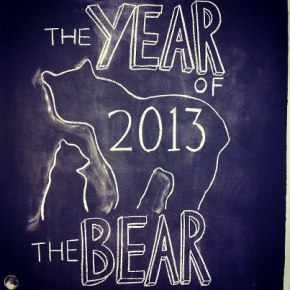 year of the bear