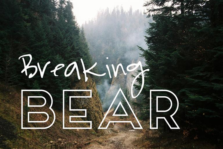 Inspiration – BreakingBear
